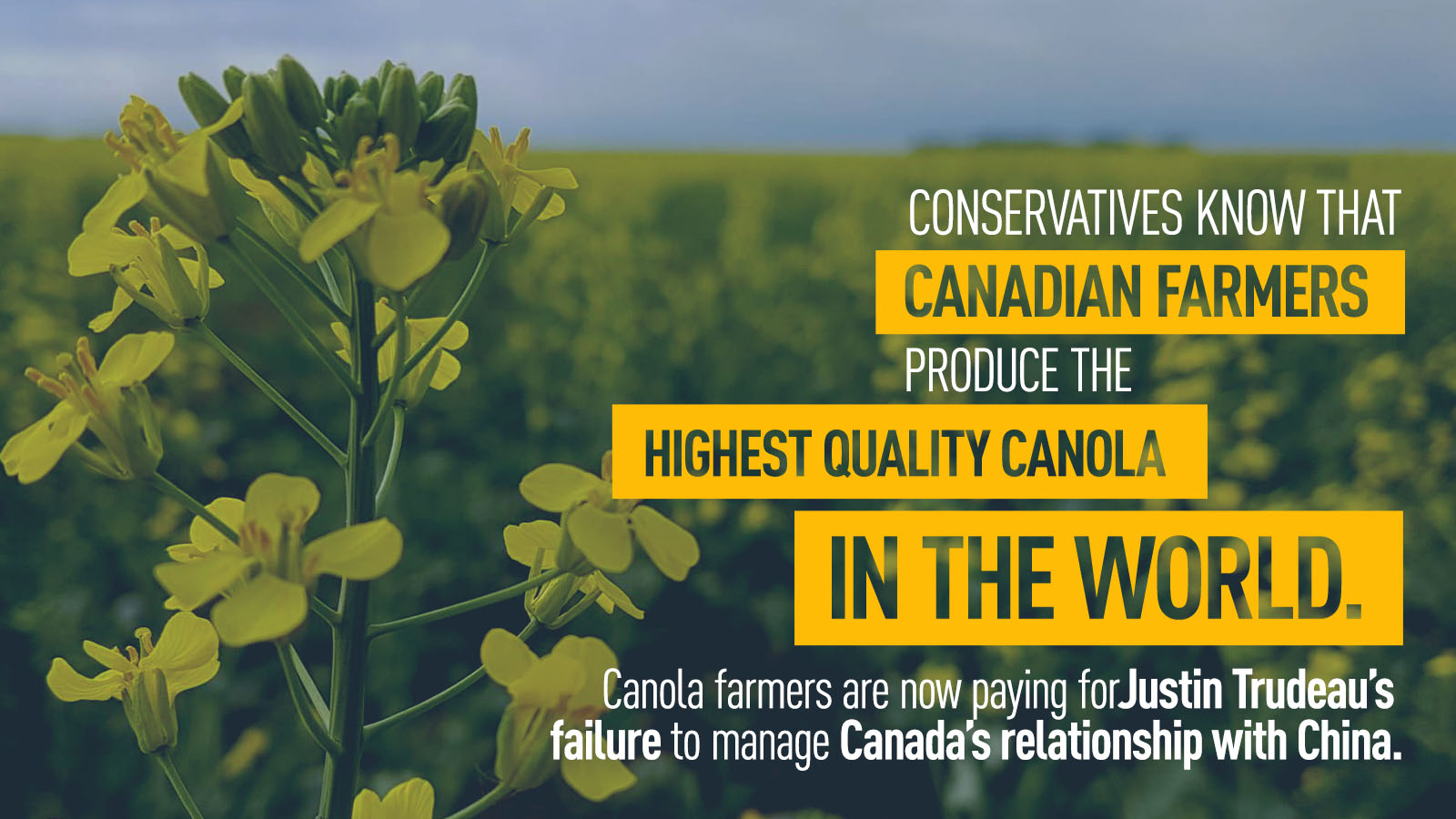 LIBERALS REJECT DEBATE ON CANADA-CHINA CANOLA CRISIS